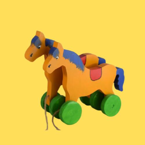 Pull / Push Along Toys